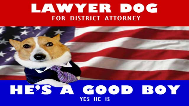 Animal Attorney suitable